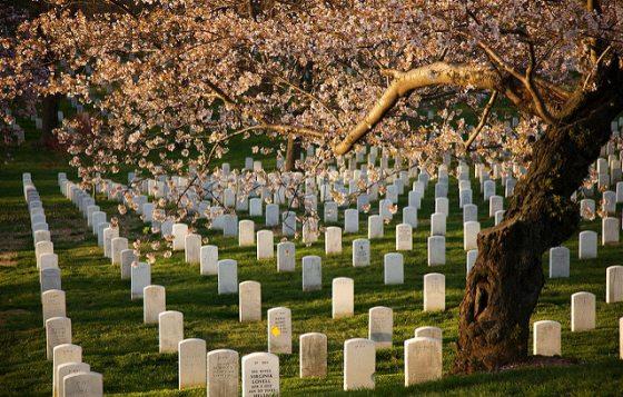 hotels near Arlington national cemetery